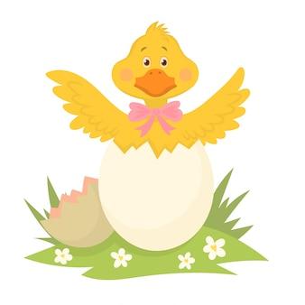 Patito amarillo recién nacido en cáscara de huevo rota