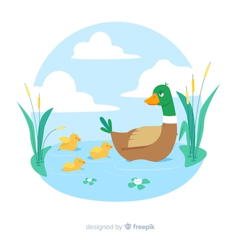 Pato madre plano con patitos en agua