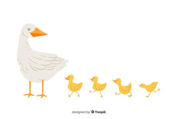 Pato madre plano y patitos