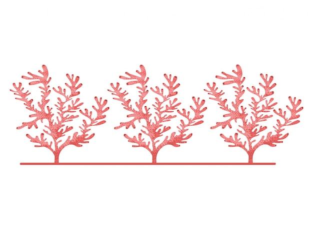 Patrón de algas