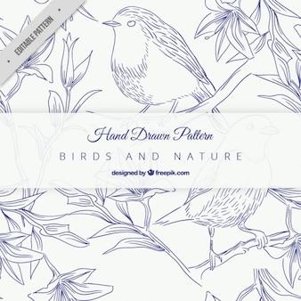 Patrón de bocetos azules de pájaros en ramas