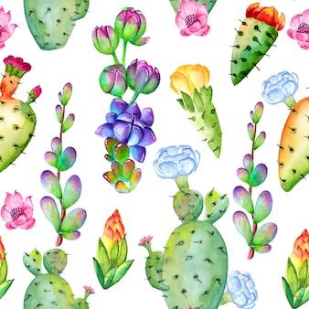 Patrón de cactus acuarela con flores