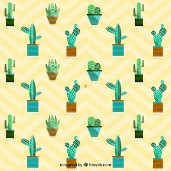 Patrón cactus plano