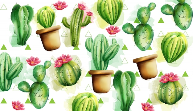 Patrón de cactus con triángulos verdes en el fondo. cactus con flores