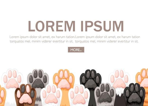 Patrón de colección de iconos de patas de gato de color diferente.