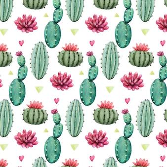 Patrón de colores con plantas de cactus
