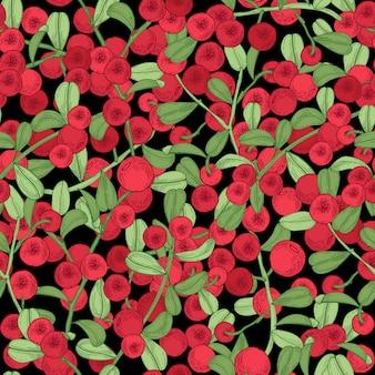 Patrón sin costuras de arándano rojo. detallado dibujado a mano ramas con bayas. colorida ilustración dibujada a mano.