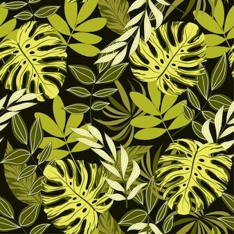 Patrón sin costuras botánico con hojas tropicales