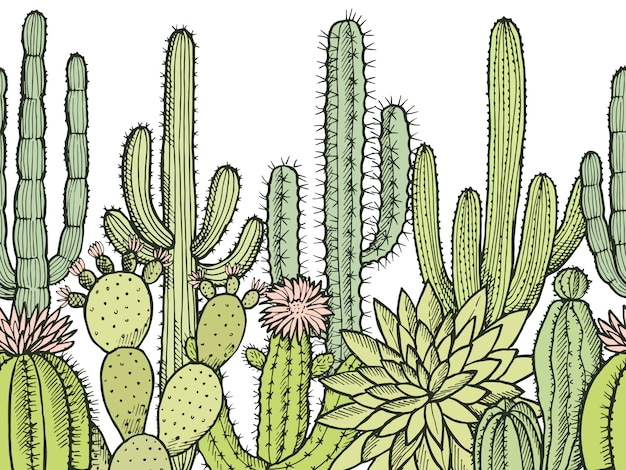 Patrón sin costuras horizontal con cactus silvestres