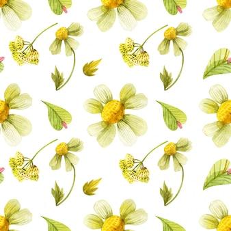 Patrón sin costuras de plantas silvestres