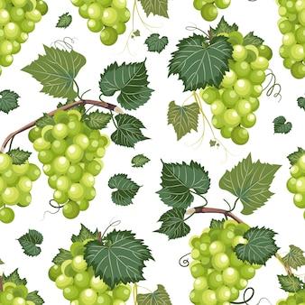 Patrón sin costuras de vid de uva