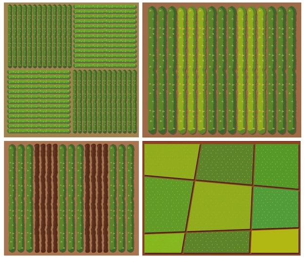 Patrón de cultivos desde la vista superior.