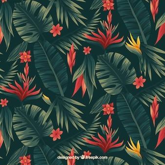 Patrón de flores tropicales