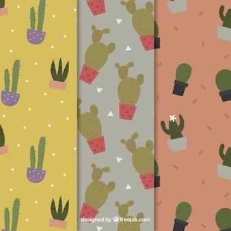 Patrón decorativo de cactus