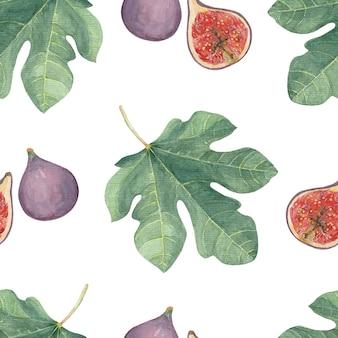 Patrón sin fisuras con frutos de higo y hojas sobre un fondo blanco.