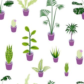 Patrón sin fisuras de hermosas plantas caseras en macetas