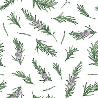 Patrón sin fisuras de hierbas con ramitas de romero sobre fondo blanco.