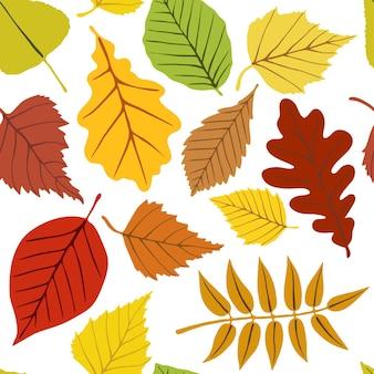 Patrón sin fisuras, hojas de otoño brillantes sobre un fondo blanco.