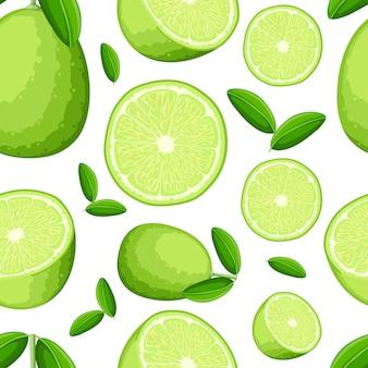 Patrón sin fisuras de limón y rodajas de limón. ilustración de limas. ilustración para cartel decorativo, producto natural emblema, mercado de agricultores. página web y aplicación móvil