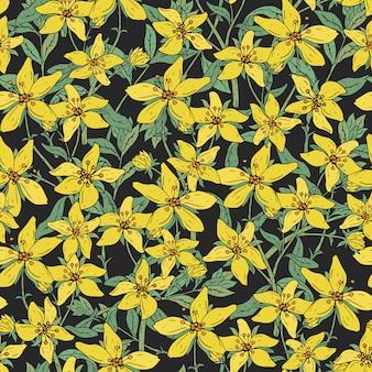 Patrón sin fisuras con la planta de flor botánica médica de hierba de san juan. dibujado a mano textura colorida en fondo negro.