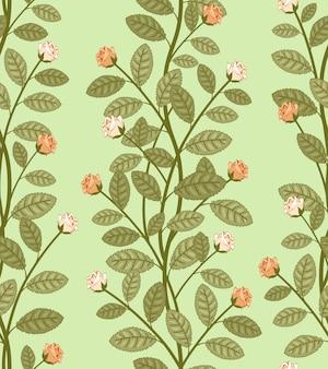 Patrón floral abstracto sin fisuras, rosas vectoriales sobre fondo verde