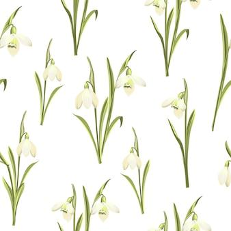 Patrón floral sin fisuras. campanillas de invierno en flor sobre fondo blanco.