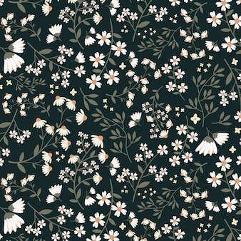 Patrón floral inconsútil de dasy