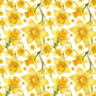 Patrón floral realista acuarela con narcisos