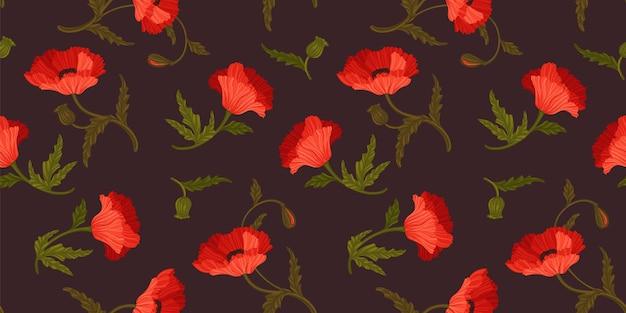 Patrón floral transparente con amapolas. diseño vectorial