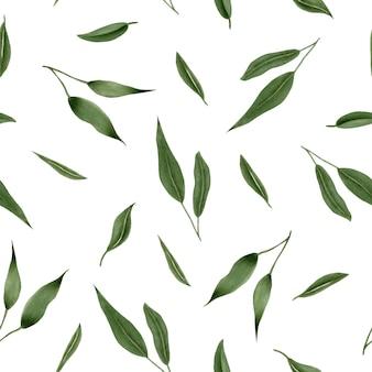 Patrón floral transparente con hojas verdes
