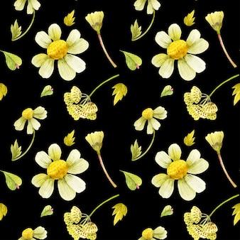 Patrón floral transparente con plantas silvestres.