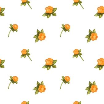 Patrón floral transparente con plantas silvestres
