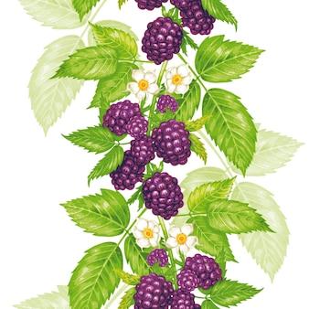 Patrón floral transparente de vector con blackberry.