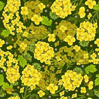Patrón de flores y hojas de colza, canola.