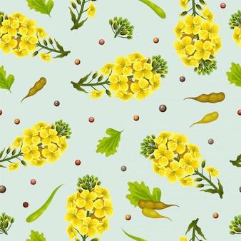 Patrón de flores y semillas de colza, canola.