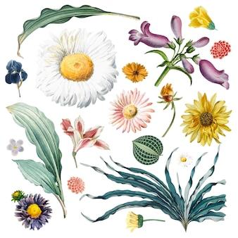 Patrón de fondo floral