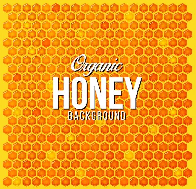 Patrón de fondo de honey comb