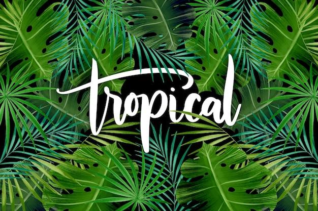 Patrón de hojas exóticas letras tropicales