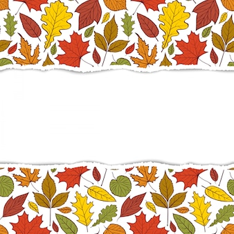 Patrón con hojas de otoño