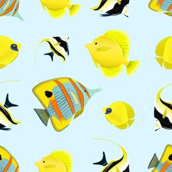 Patrón de ídolo morisco, pez tropical mariposa y cebra-soma, patrón transparente de pez vela amarillo