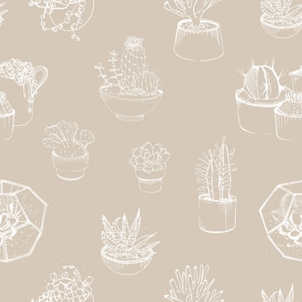 Patrón moderno con contornos suculentos dibujados a mano. plantas del desierto que crecen en macetas de barro y viveros de vidrio.