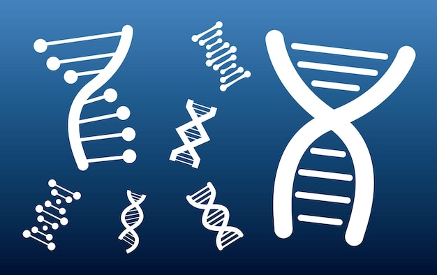 Patrón de moléculas de adn establecer iconos