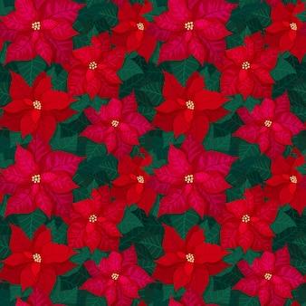 Patrón de navidad transparente brillante con flor de pascua roja y hojas verdes. fondo festivo para papel de embalaje de impresión textil y azulejos florales. ilustración vectorial