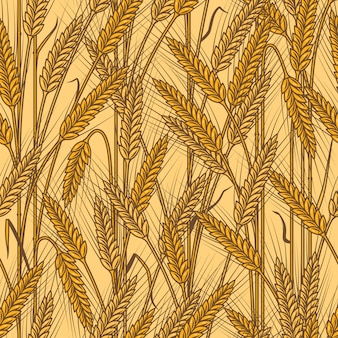 Patrón de orejas de cereal sin costura