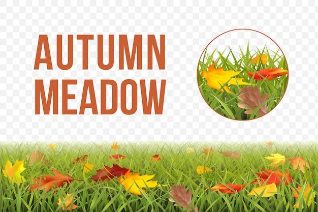 Patrón de otoño horizontal sin fisuras con césped, hojas y fragmento de un patrón ampliado.