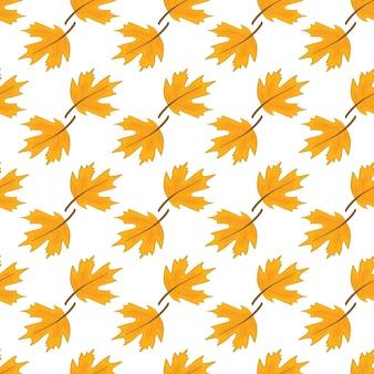 Patrón de otoño sobre un fondo blanco.