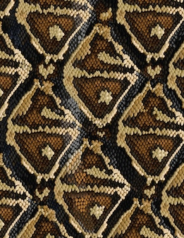 Patrón de piel de serpiente en estilo moderno.