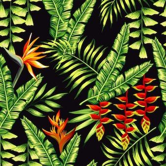Patrón de plantas tropicales y palmeras.