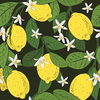 Sin patrón de ramas con limones
