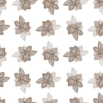 Patrón transparente botánico aislado con flores pálidas siluetas de orquídeas.